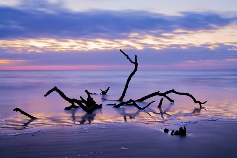 Craig Wolf Photography: Hunting Island, SC