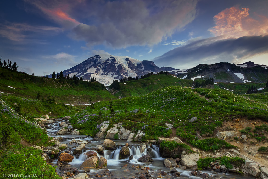 Mt Rainier National Park, WA