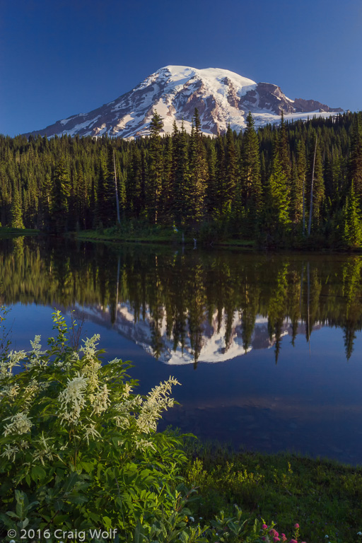Mt. Rainier National Park, WA